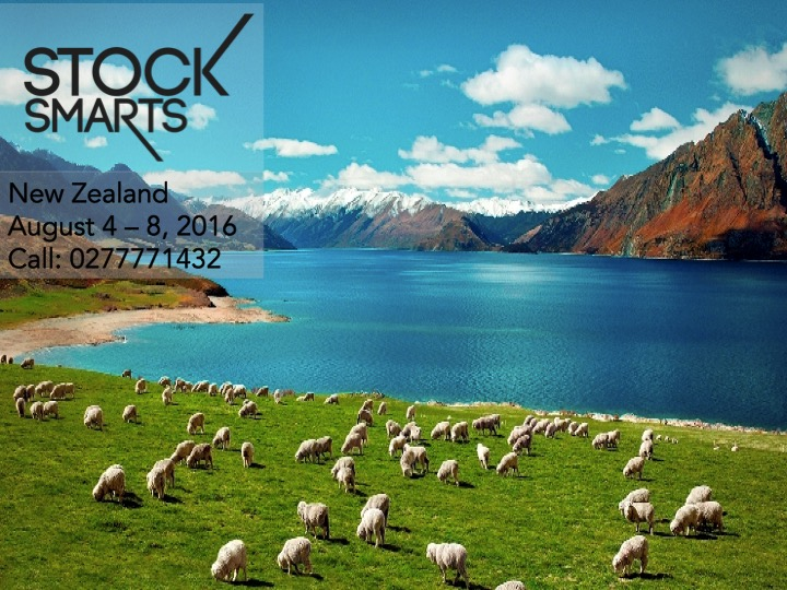 Stock Smarts New Zeland